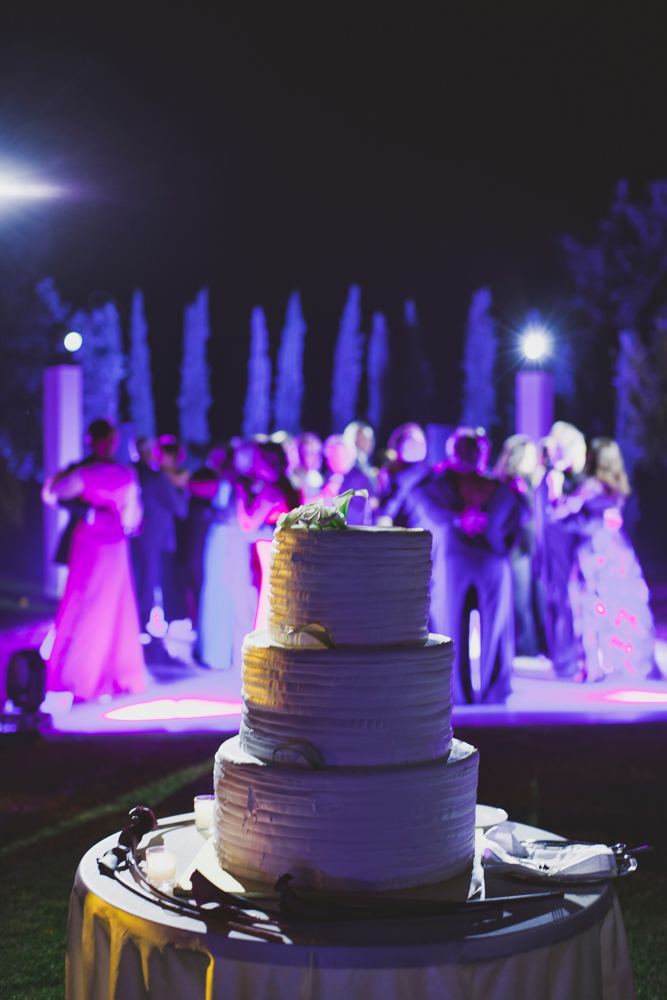 wedding cake with guests on the background
