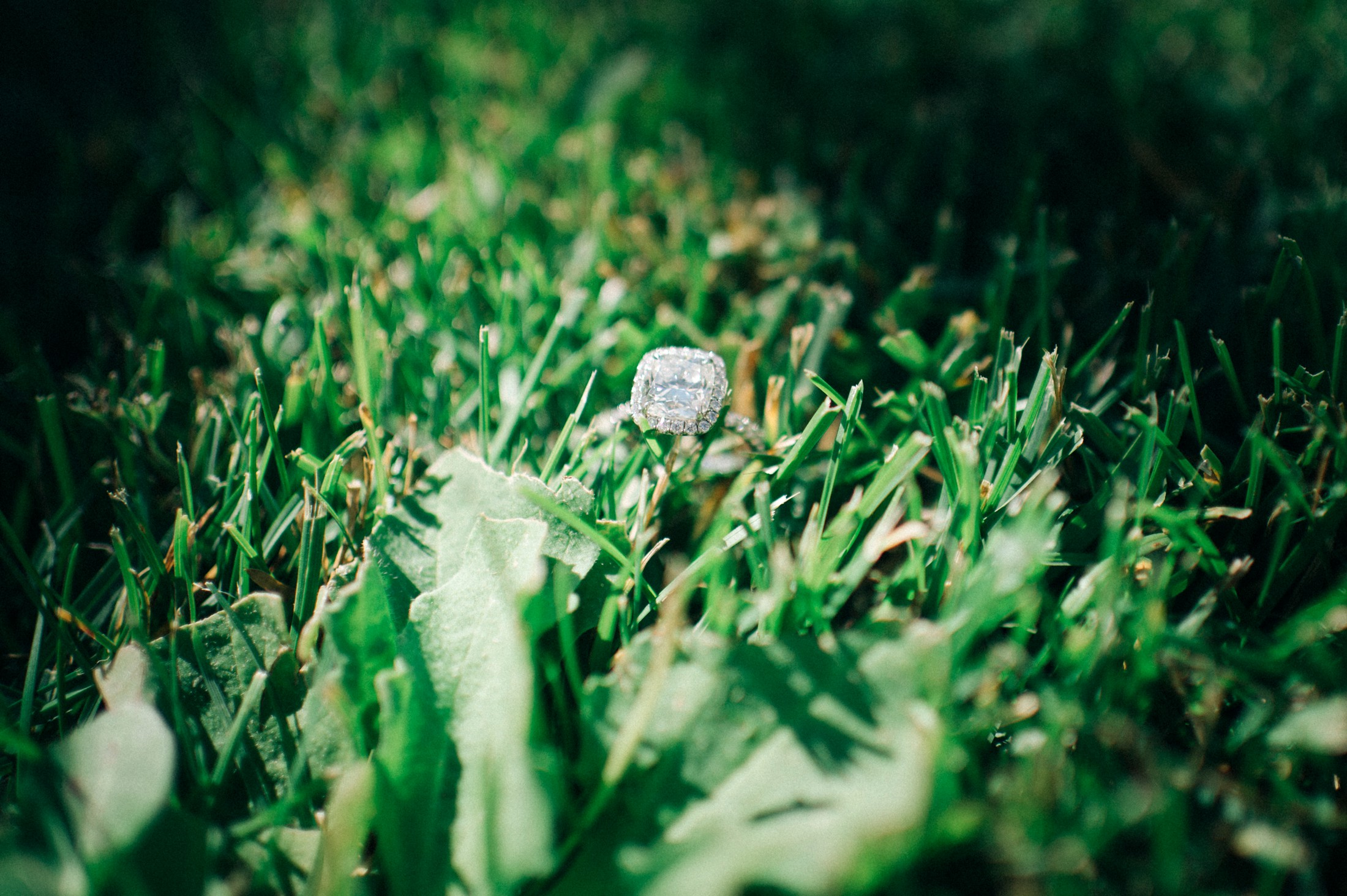 wedding ring on the grass