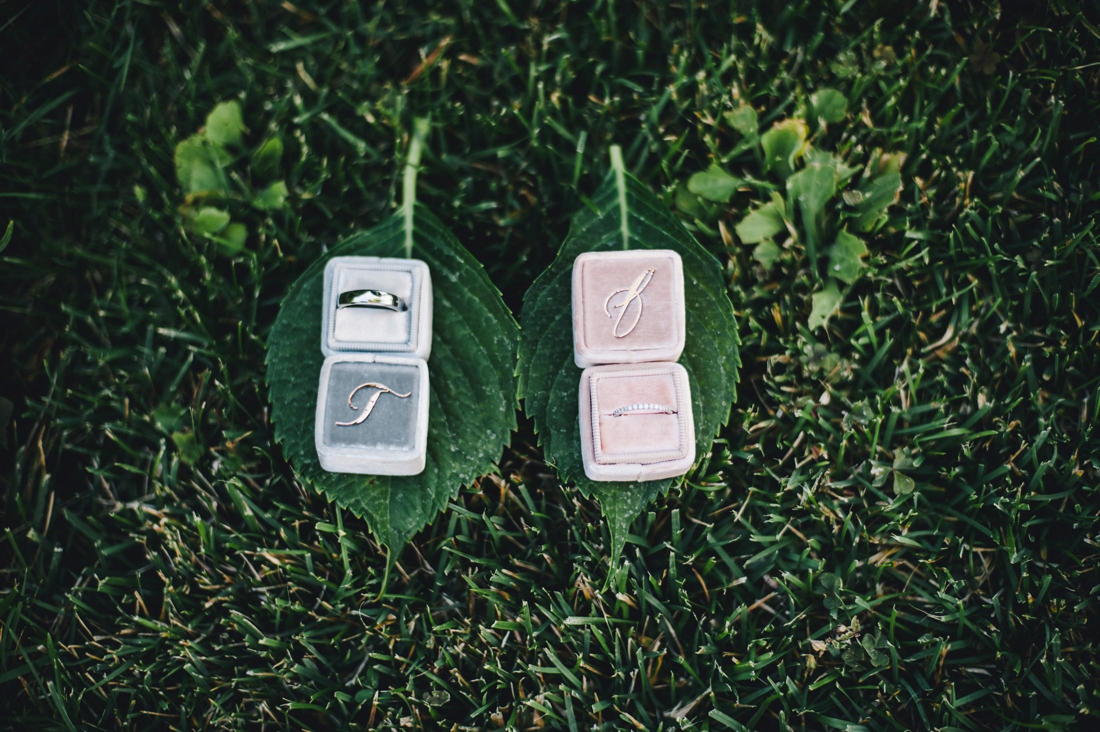 wedding rings on green leaves