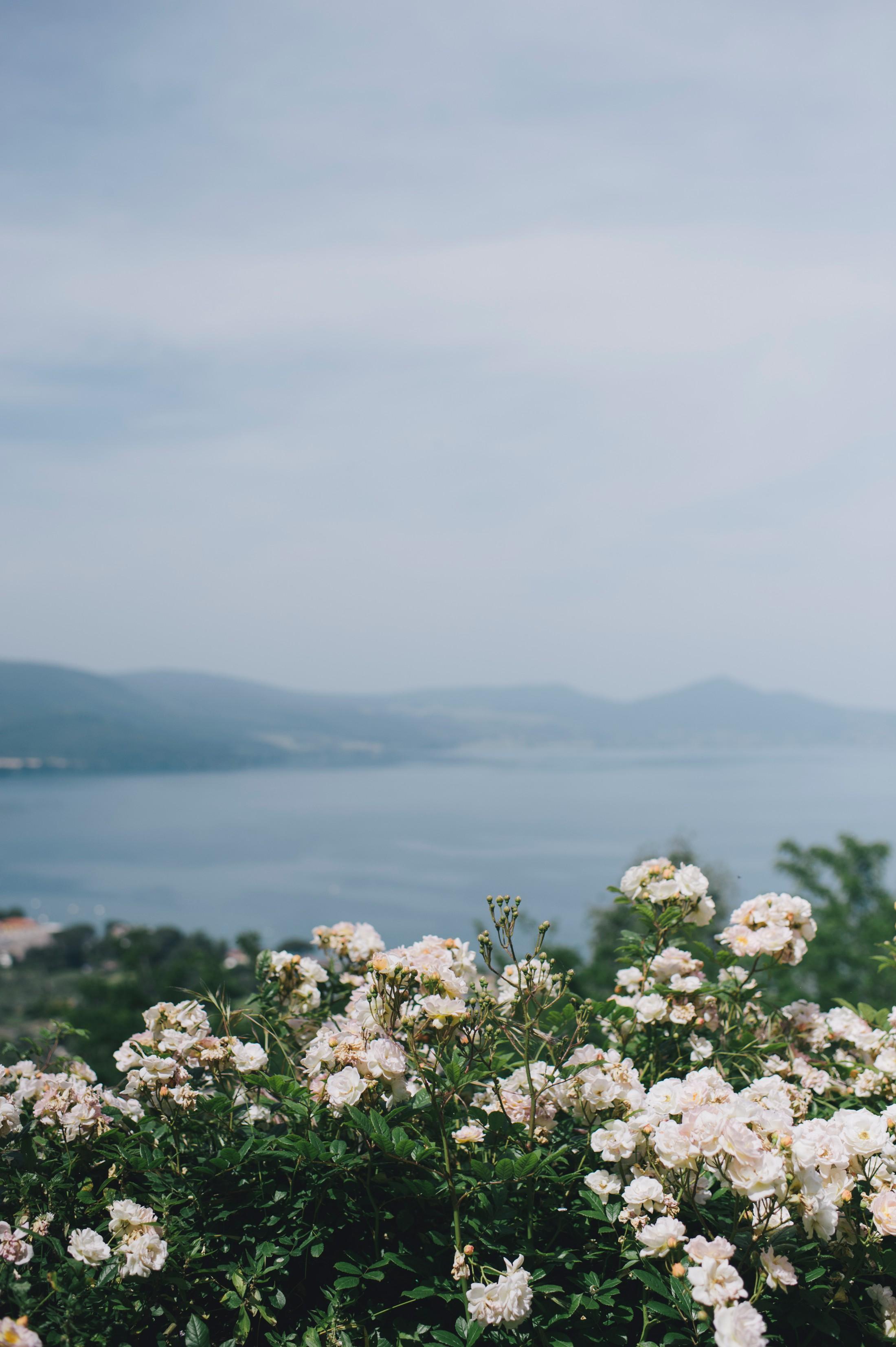 landscape in bracciano