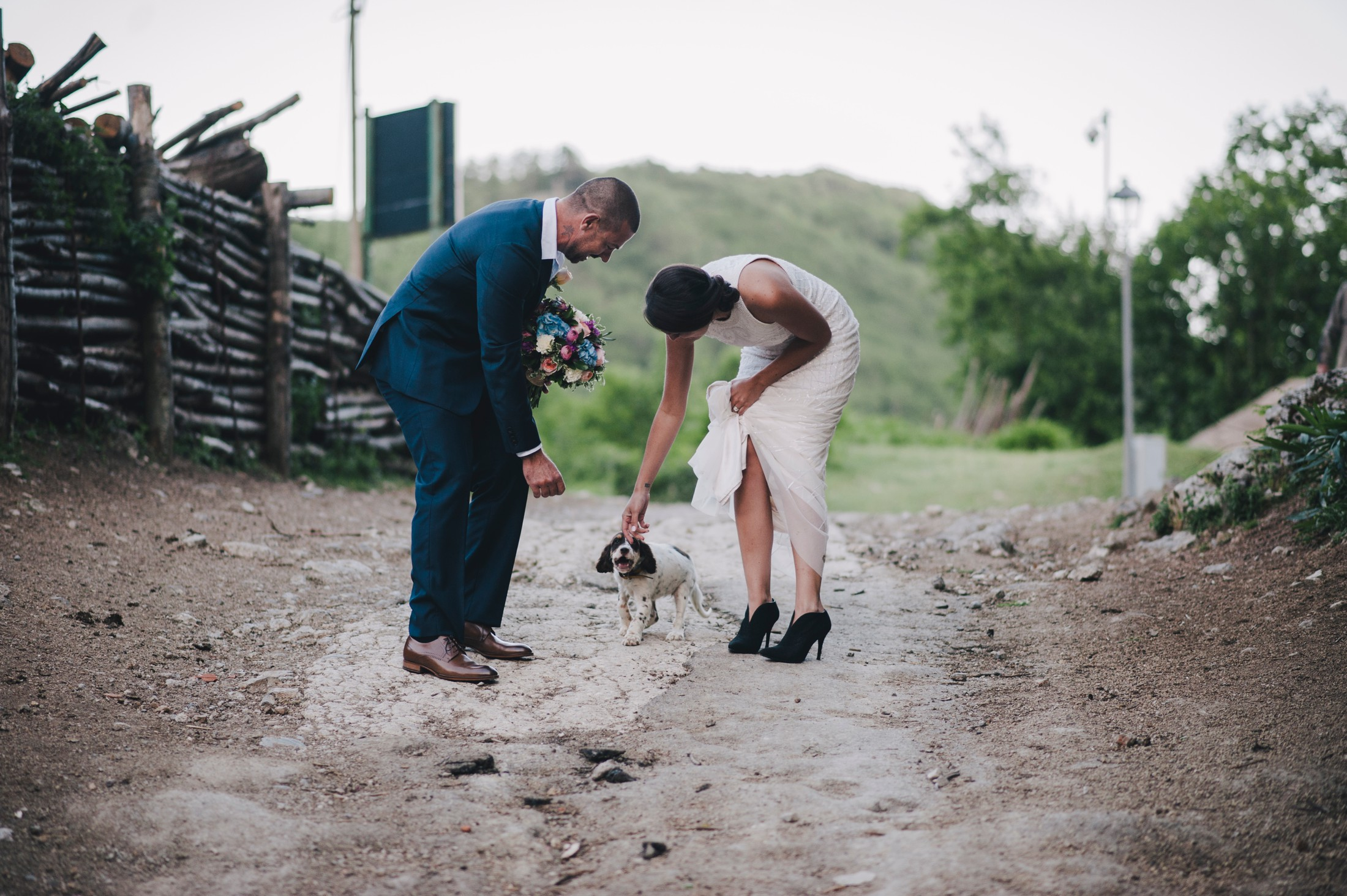 the bride and the groom meet a little dog