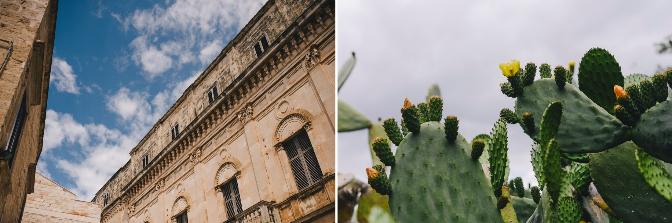 collage puglia cactus and buildings