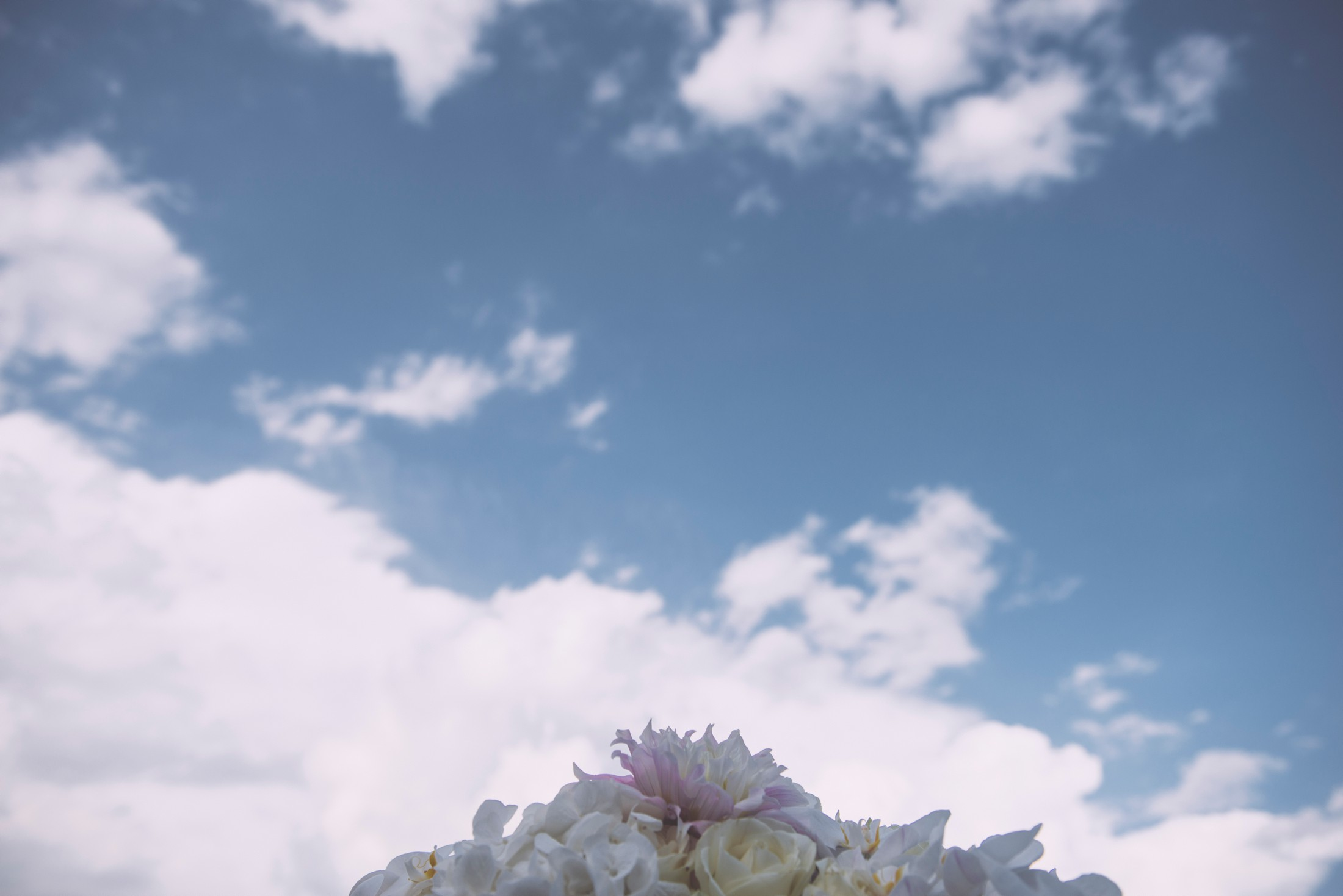 detail of wedding flower decor against the blue sky