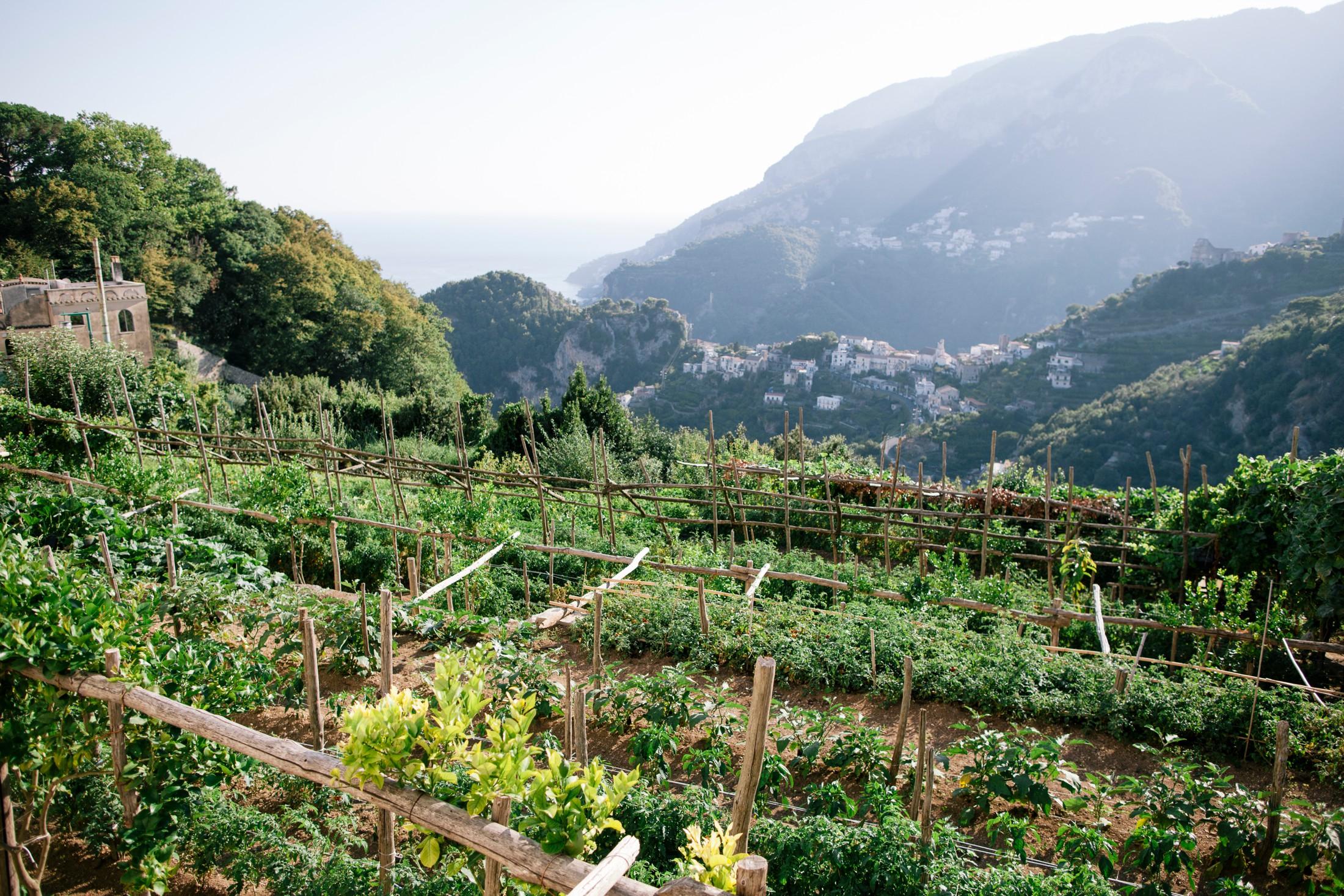 landscape from villa cimbrone ravello