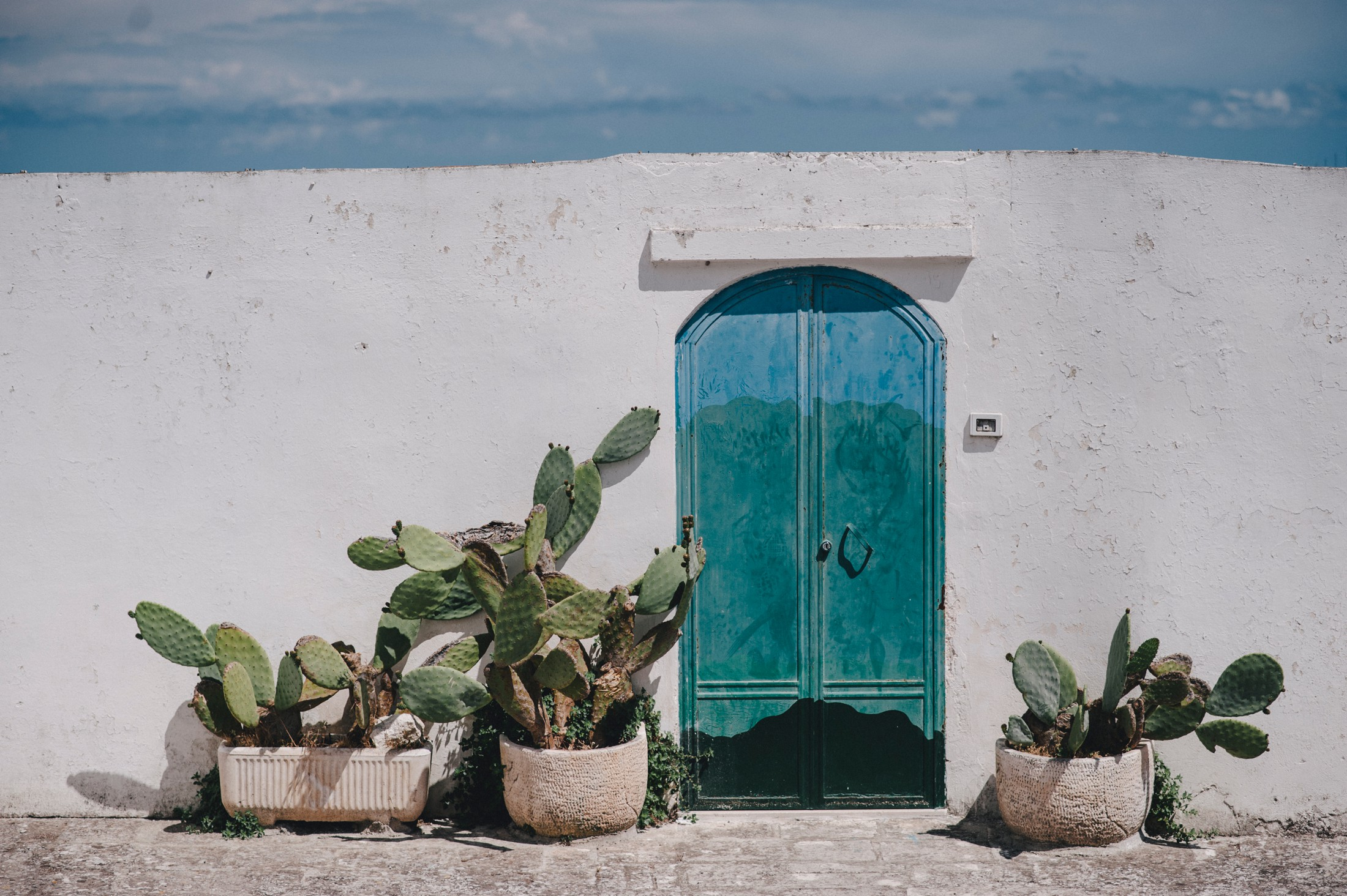 blue door with green cactus